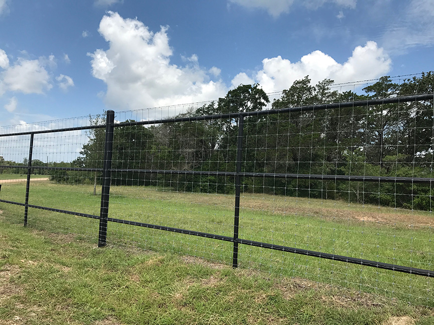 Tall pipe fence