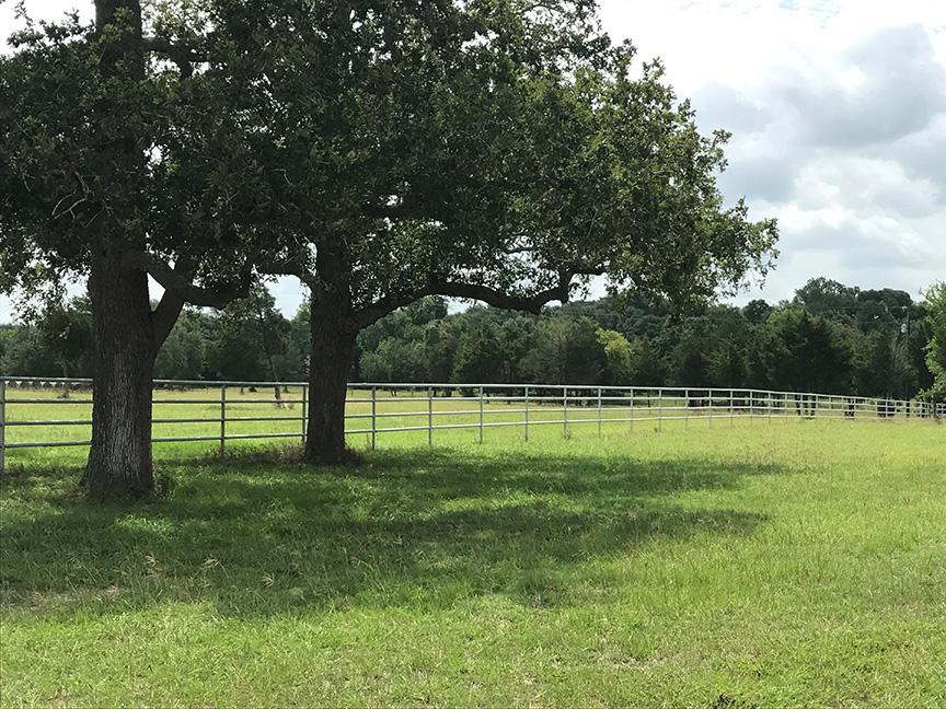 Pipe ranch fene