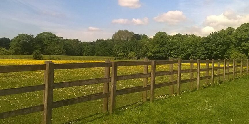 wood horse fencing company